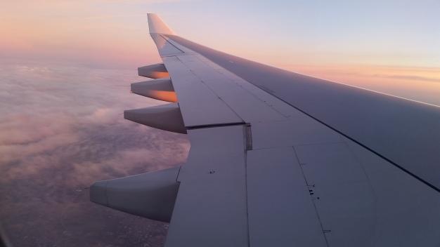 BrusselsAirplaneJan21