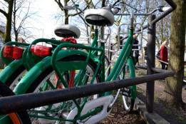 ... Heineken bikes?