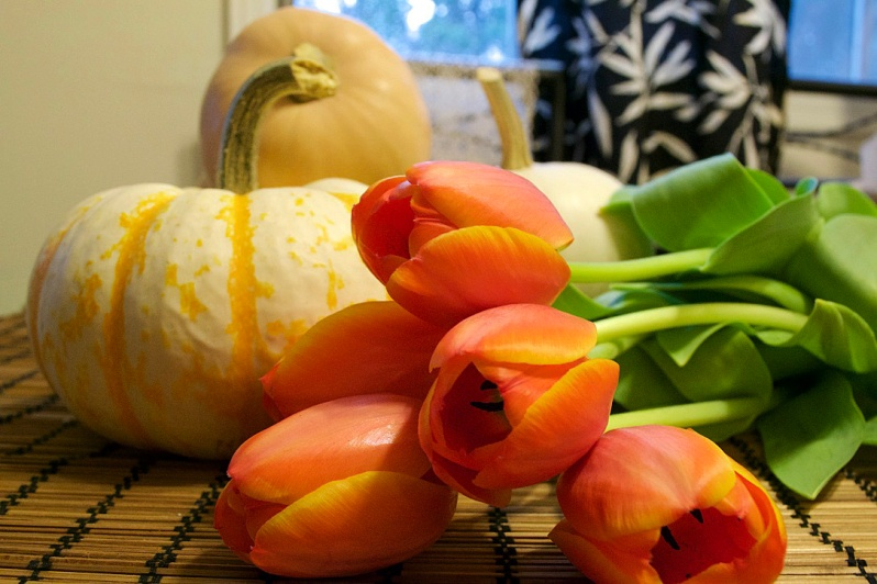 tulipspumpkins